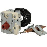 Weishaupt Limiteur de température EGO 45111022692
